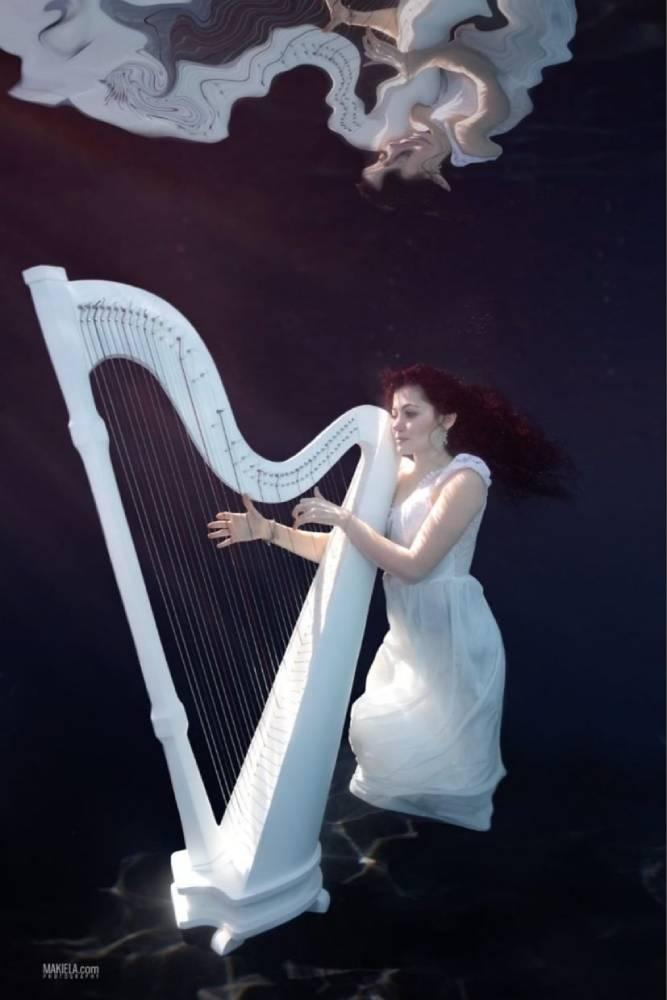 Arabic Harpist - Gae events - Dubai - UAE (5)